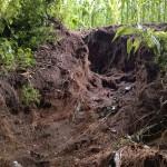 Erosion am Feldrand