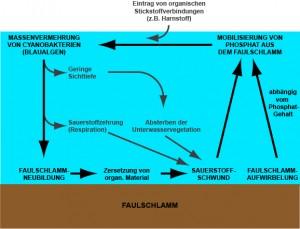 Abb_6_Faulschlammproblem
