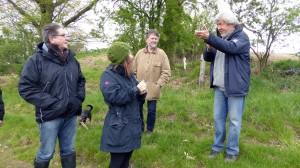 Die Teilnehmer der Begehung erfahren wissenswertes über Schmetterlinge