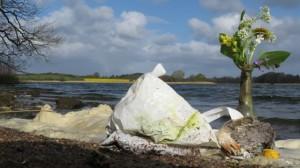 Maiglöckchen, Schaum & Müll & Tränenfisch am Ufer in Büch, Angeliter Landarztraps – Collage von K.M.Walther